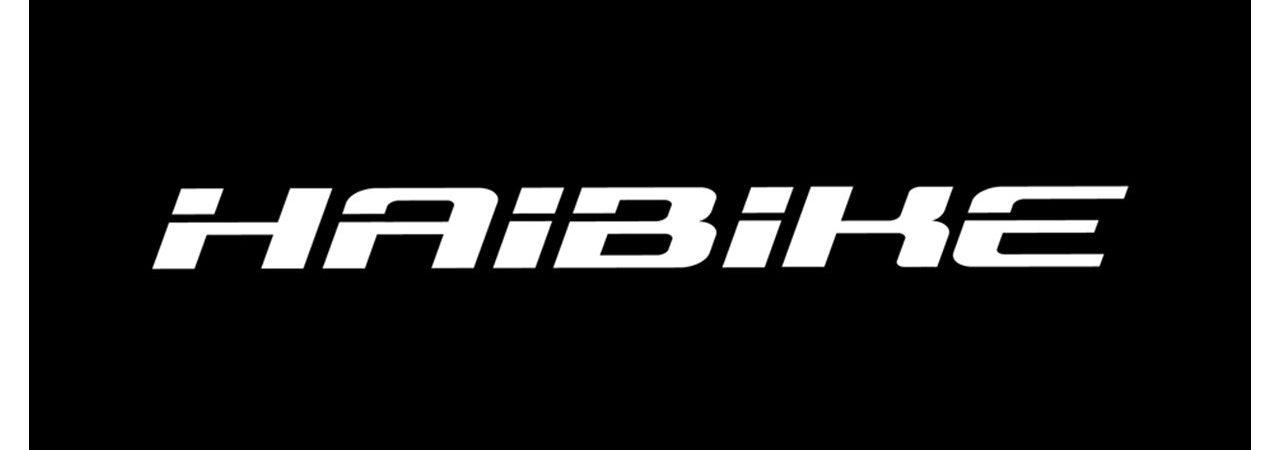 Haibike_Renz Radsport