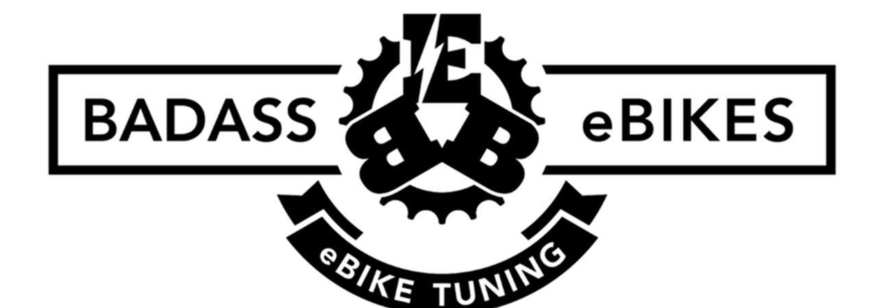 Badass eBikes Renz Radsport